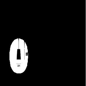 Tite 2